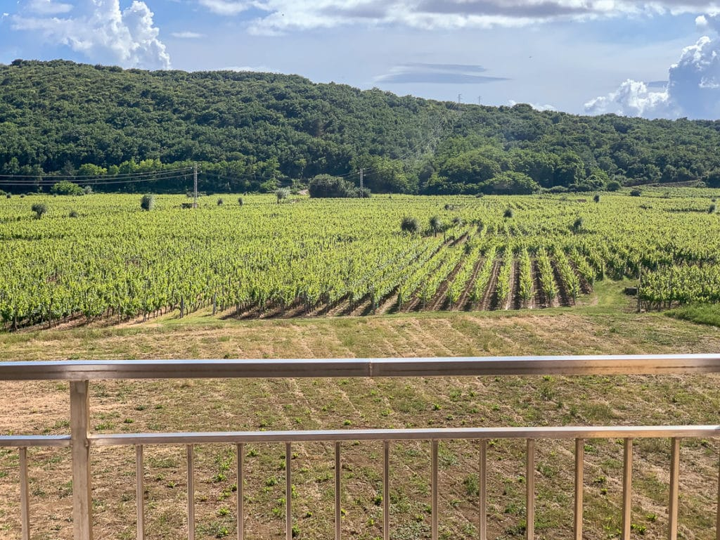 katunar winery